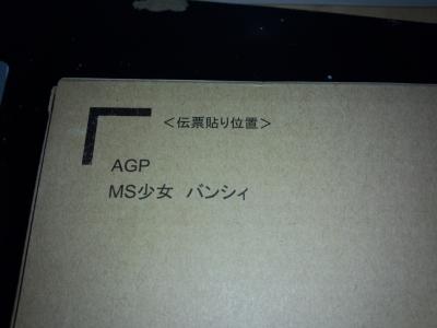 FJ311320.jpg