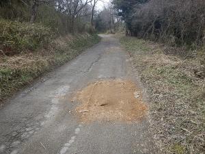 会社近辺の道路2