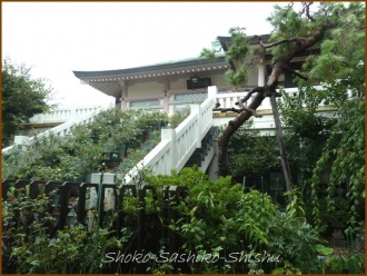 20140828 南蔵院 本殿 1 8月納涼歌舞伎