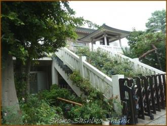 20140828 南蔵院 本殿 2 8月納涼歌舞伎