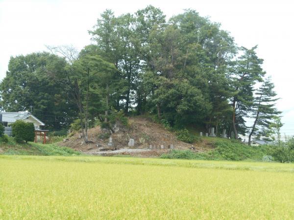 白山神社遠景