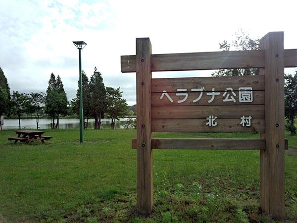 ヘラブナ公園s1
