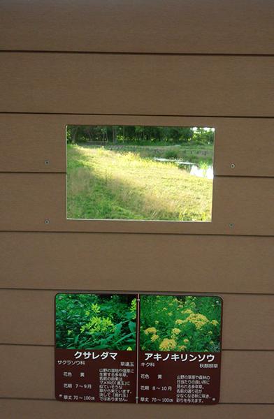 野帳観察窓の窓