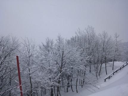 大雪(1)