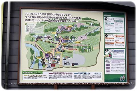 sayomaru10-962.jpg