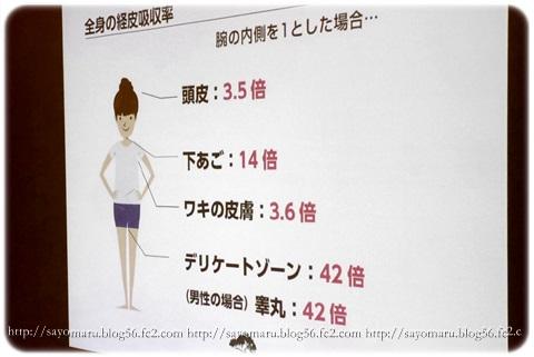 sayomaru11-167.jpg