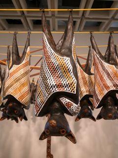 シドニー美術館17