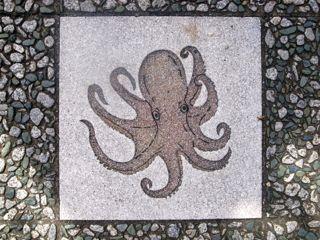 八幡浜駅前通り 5