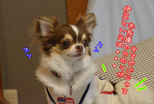 DSC_5562.jpg