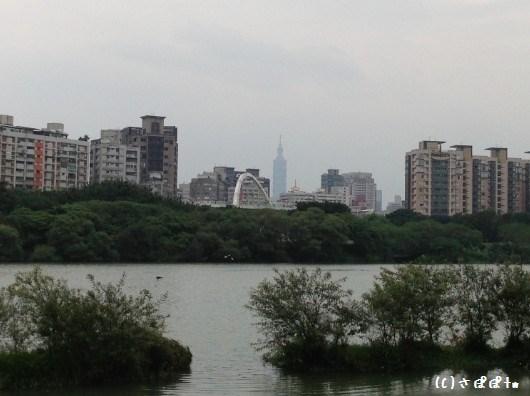 華中橋河岸7-1
