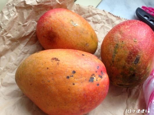 台湾アップルマンゴー4