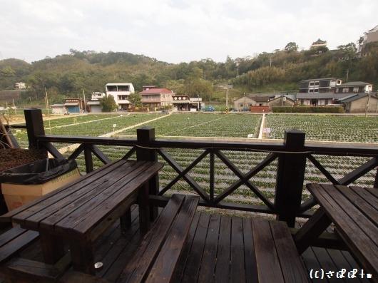 大湖酒荘29