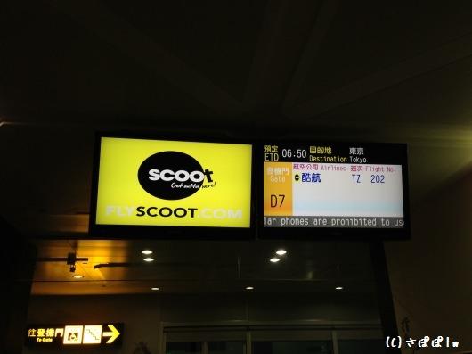 scoot4.jpg