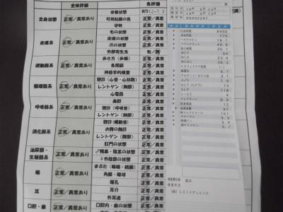 DSCF6032-9.jpg