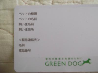 DSCF6476-9.jpg