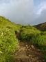酸ヶ平への登山道