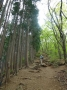 ゴンジリ峠への急坂の登山道-2
