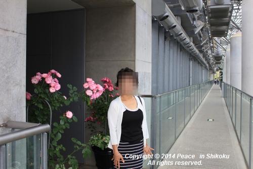 ijawa-0526-8528.jpg