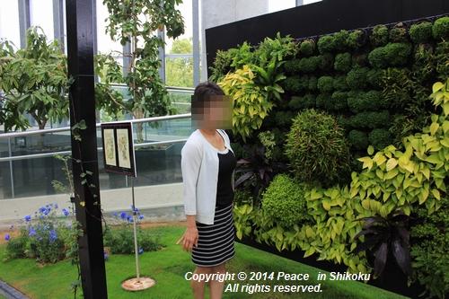 ijawa-0526-8564.jpg