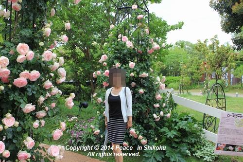 ijawa-0526-8608.jpg