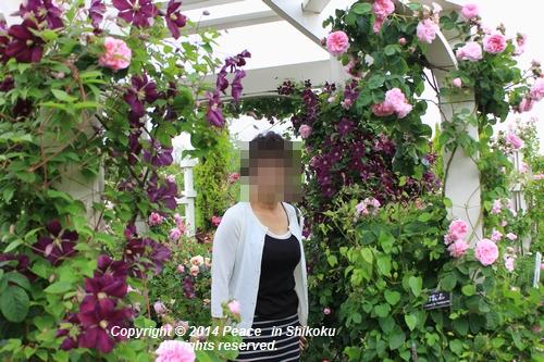 ijawa-0526-8646.jpg
