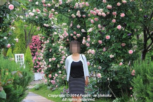 ijawa-0526-8660.jpg