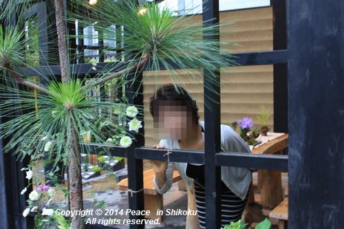 ijawa-0526-8713.jpg