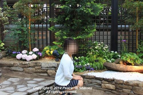 ijawa-0526-8722.jpg