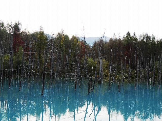s-青い池 9月27日