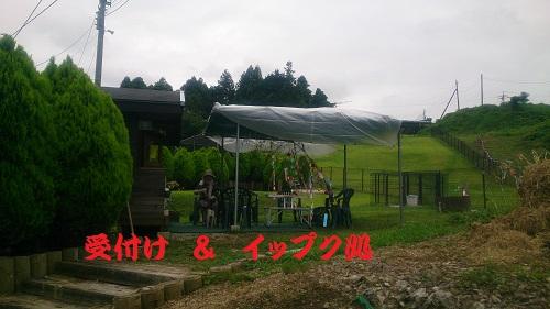 20140706-4.jpg