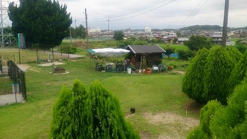 20140706-7.jpg