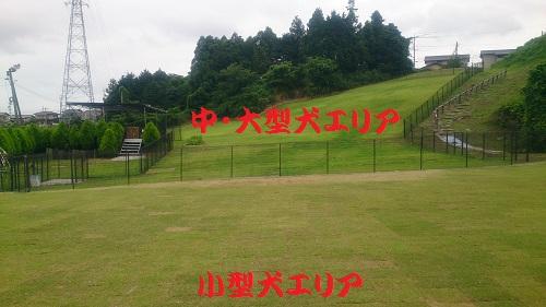 20140706-8.jpg