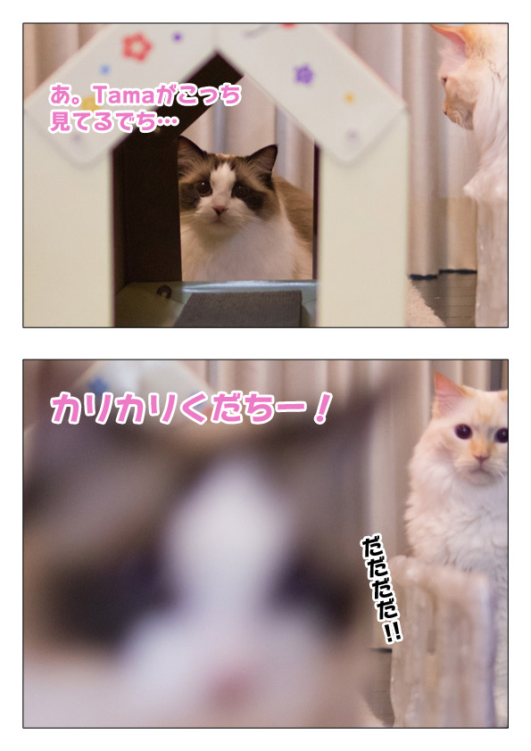 20140827_3.jpg