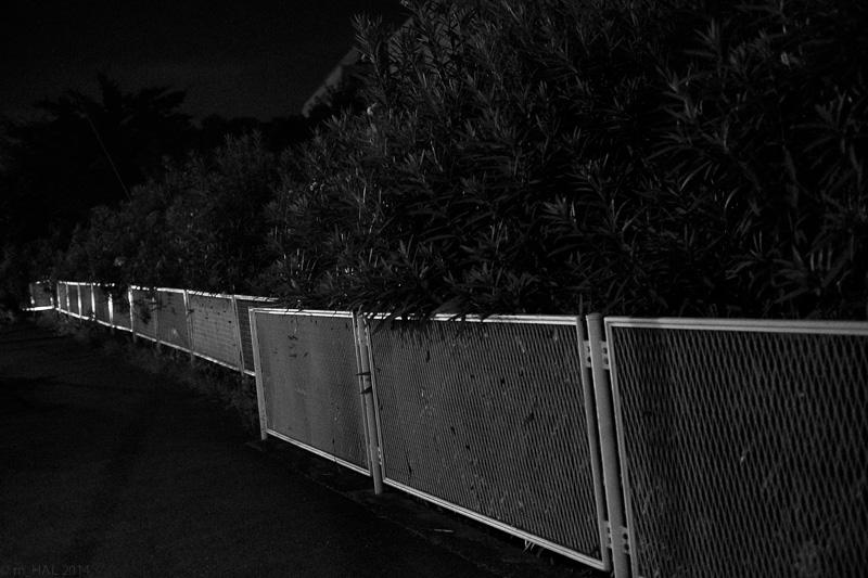 2014-09-06_night_vision-02.jpg