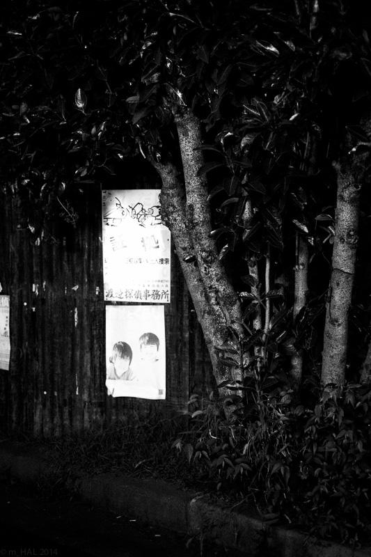 2014-09-06_night_vision-03.jpg