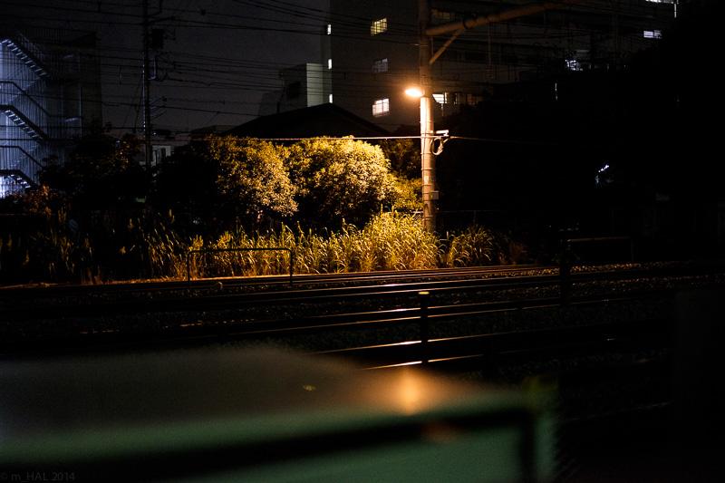 20140915_night_vision-06.jpg