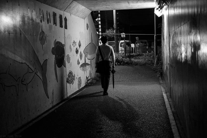 20140923_night_vision-02.jpg