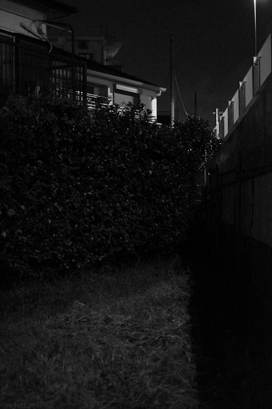 20141006_night_vision-02.jpg