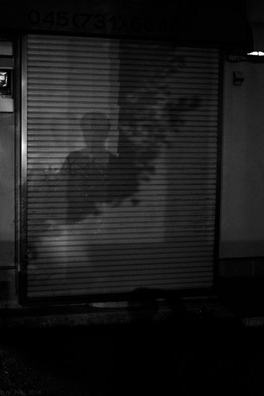 20141012_night_vision-07.jpg