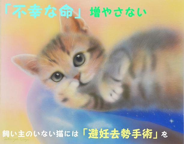 避妊去勢ポスター2