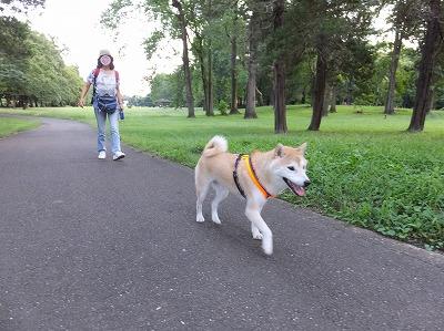 初めての公園♪
