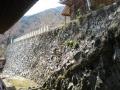 gyoukizi31.jpg