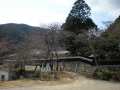 gyoukizi38.jpg