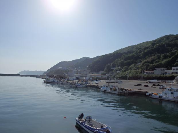 漁港内の突堤から西の方を見る