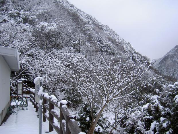 諭鶴羽ダムの周遊道路の入り口付近