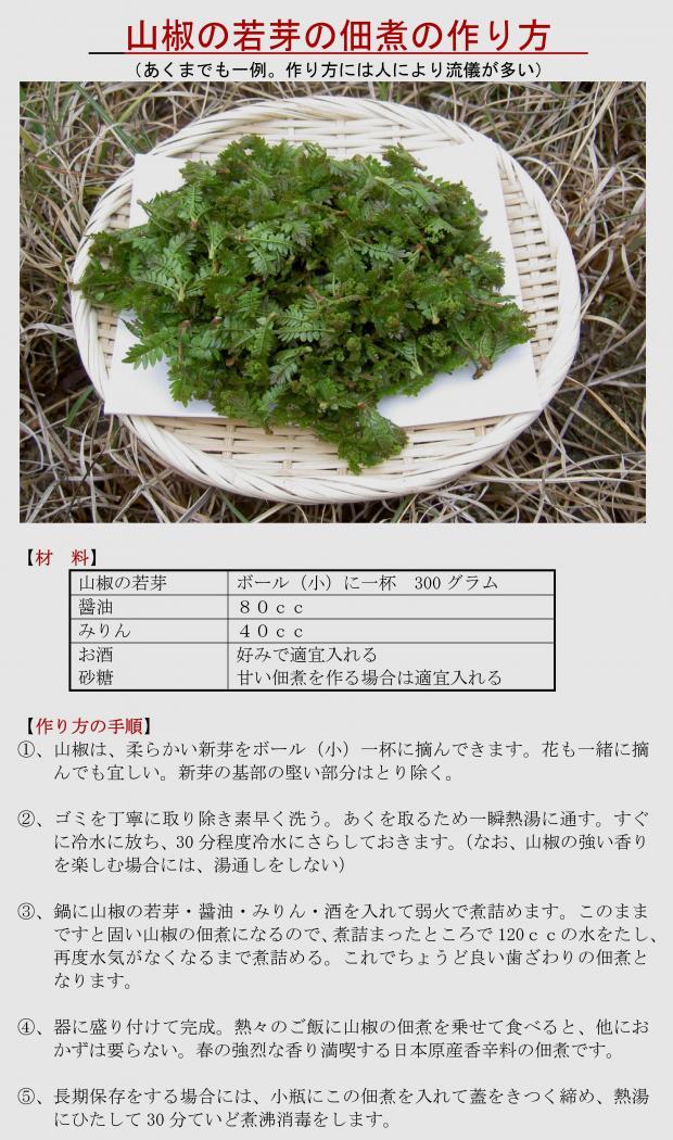 サンショウの新芽の佃煮の作り方レシピ
