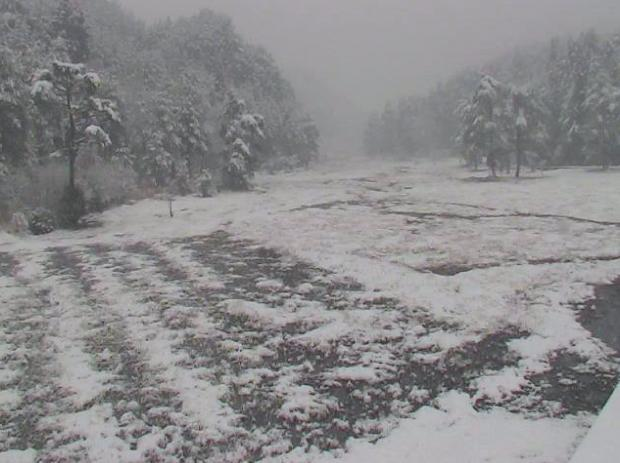 2014年4月6日08時30分 徳島県三好市黒沢湿原の春の雪