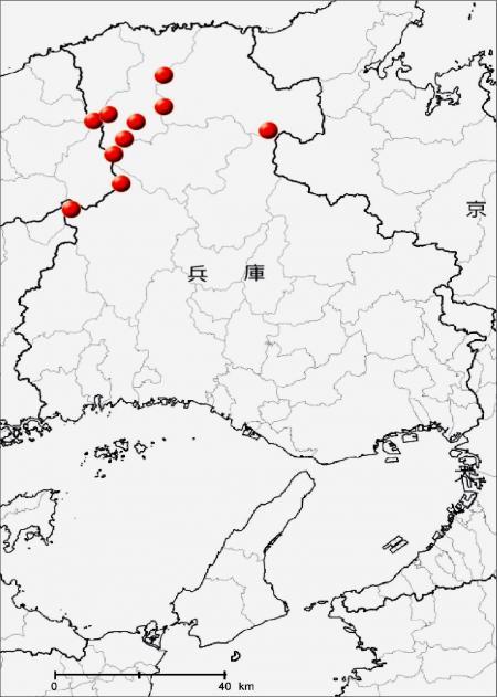 ネマガリダケの兵庫県内の分布
