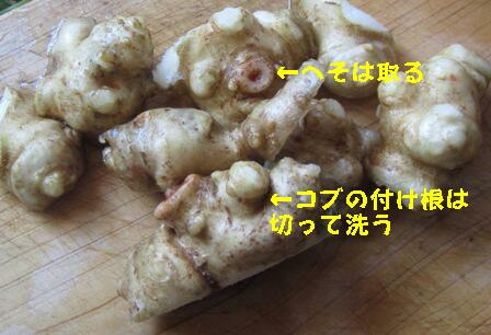 キクイモ味噌漬け (1)