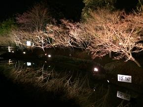 nagashima-15.jpg